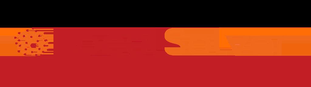 logo-LOCALSOLVER-home